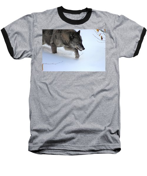 Snow Walker Baseball T-Shirt