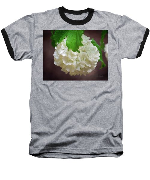 Snowball Bloom Baseball T-Shirt