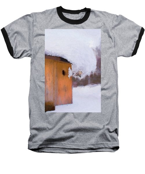 Baseball T-Shirt featuring the photograph Snowdrift On The Bluebird House by Gary Slawsky