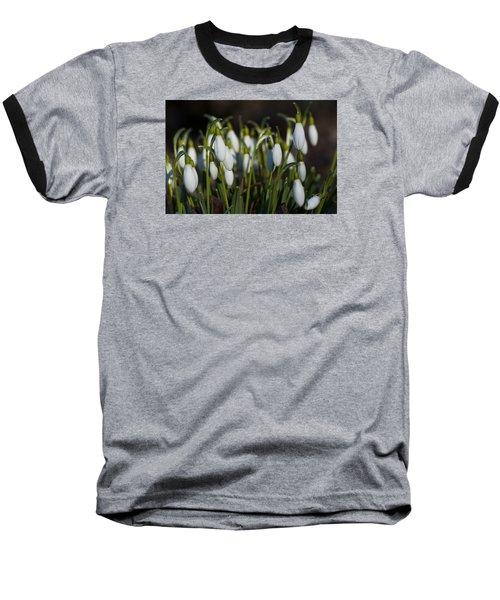 Snowdrops Baseball T-Shirt by Dan Hefle