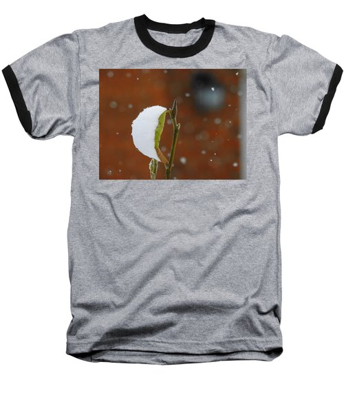Snowing Baseball T-Shirt by Betty-Anne McDonald