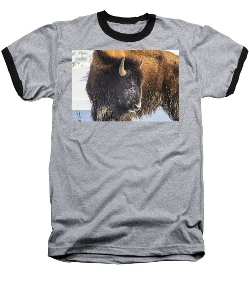 Snowy Bison Baseball T-Shirt
