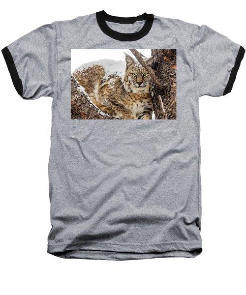 Snowy Bobcat Baseball T-Shirt