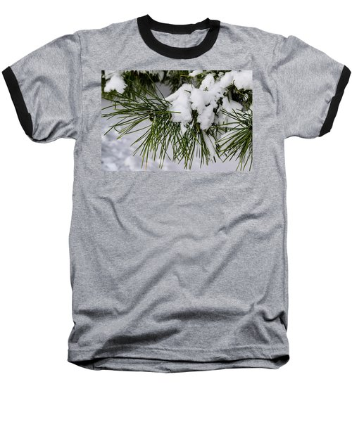 Snowy Branch Baseball T-Shirt
