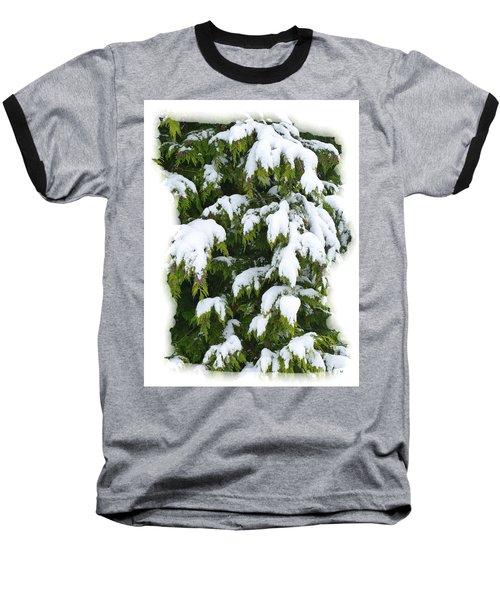 Baseball T-Shirt featuring the photograph Snowy Cedar Boughs by Will Borden