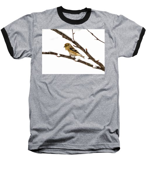 Snowy Day Goldfinch Baseball T-Shirt