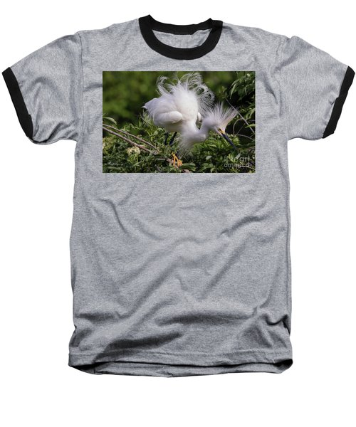 Snowy Decsending Baseball T-Shirt