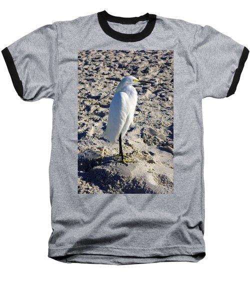 Snowy Egret At Naples, Fl Beach Baseball T-Shirt
