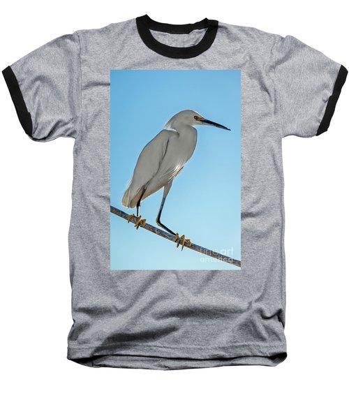 Snowy Egret Baseball T-Shirt by Robert Bales