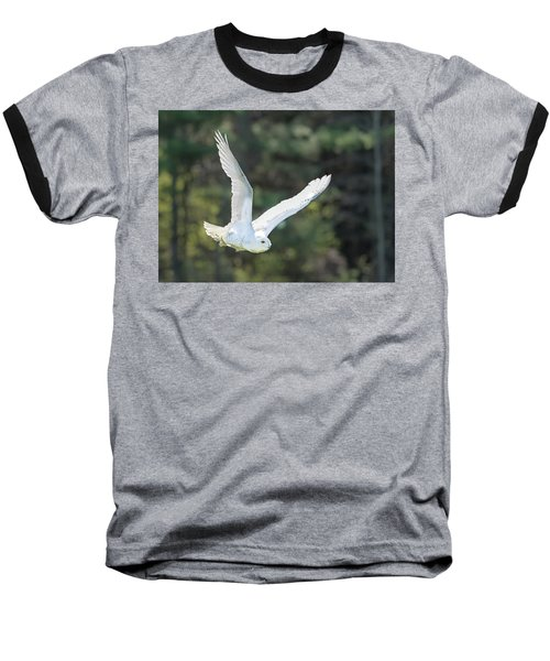 Snowy Glide Baseball T-Shirt