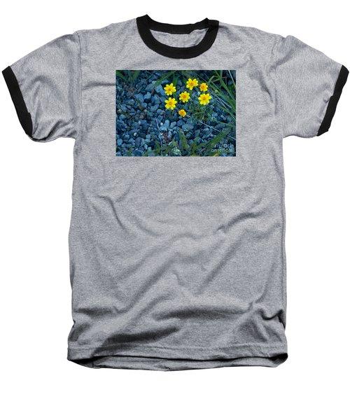Snowy Goldeneye-#3094 Baseball T-Shirt by J L Woody Wooden