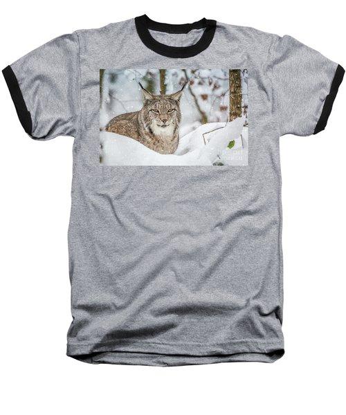 Snowy Lynx Baseball T-Shirt