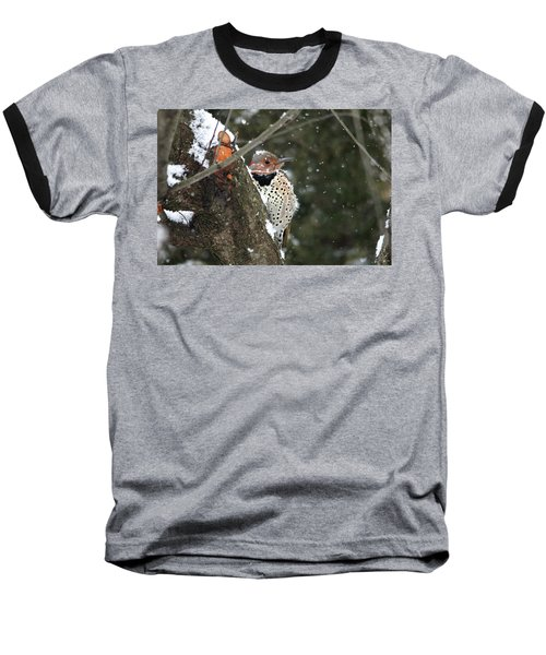 Snowy Northern Flicker Baseball T-Shirt
