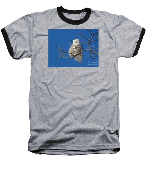 Snowy Owl 7 Baseball T-Shirt