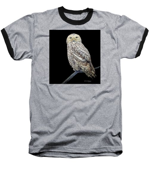 Snowy Owl On Black Baseball T-Shirt by Constantine Gregory