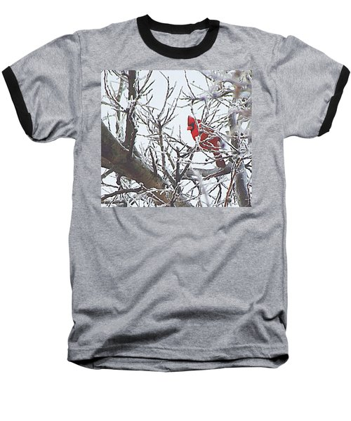 Snowy Red Bird A Cardinal In Winter Baseball T-Shirt