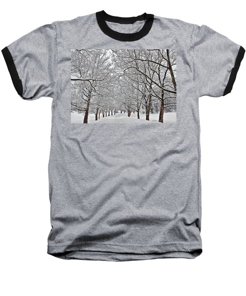 Baseball T-Shirt featuring the photograph Snowy Treeline by Aimee L Maher Photography and Art Visit ALMGallerydotcom