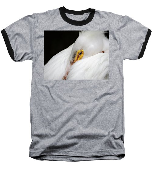 Snuggled White Pelican Baseball T-Shirt by Penny Lisowski