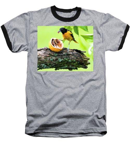 Soaking Wet Baltimore Oriole At The Feeder Baseball T-Shirt