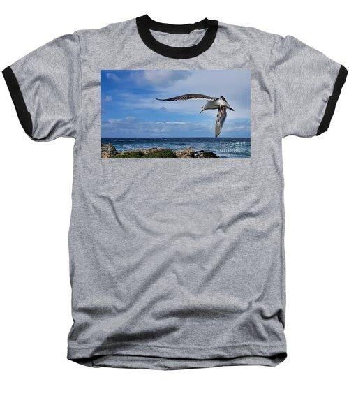 Soaring Seagull  Baseball T-Shirt by Gina Savage