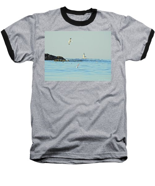 Soaring Seagull Baseball T-Shirt