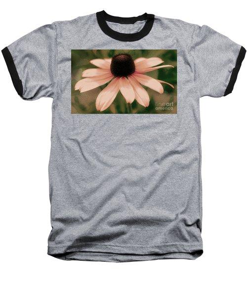 Soft Delicate Pink Daisy Baseball T-Shirt by Judy Palkimas