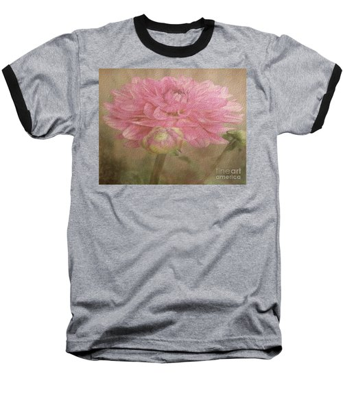 Soft Graceful Pink Painted Dahlia Baseball T-Shirt by Judy Palkimas