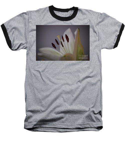Soft Lily Baseball T-Shirt by Roberta Byram