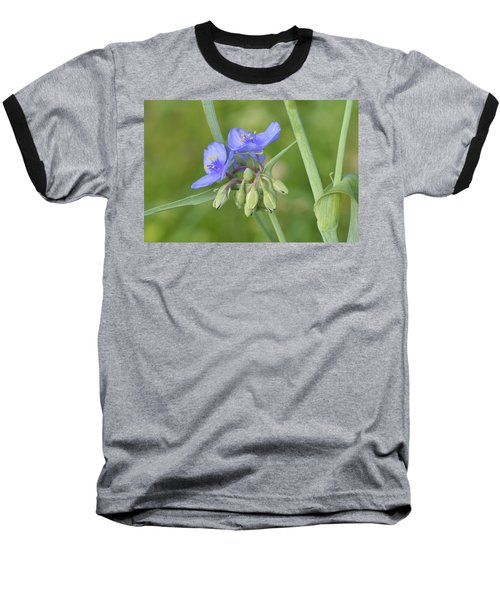 Soft Purple Spider Baseball T-Shirt