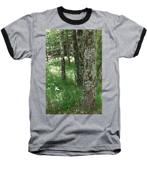Soft Trees Baseball T-Shirt by Shari Jardina