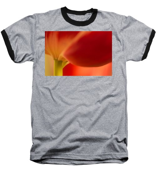 Soft Tulip Baseball T-Shirt
