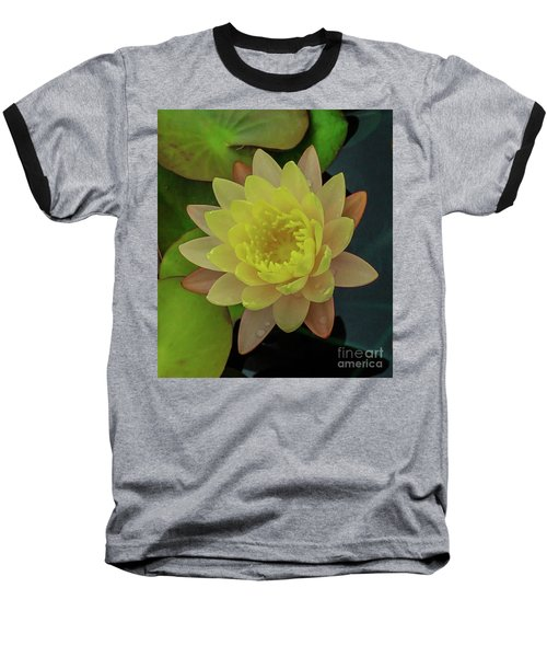 Softly Pink And Yellow Lilly Baseball T-Shirt