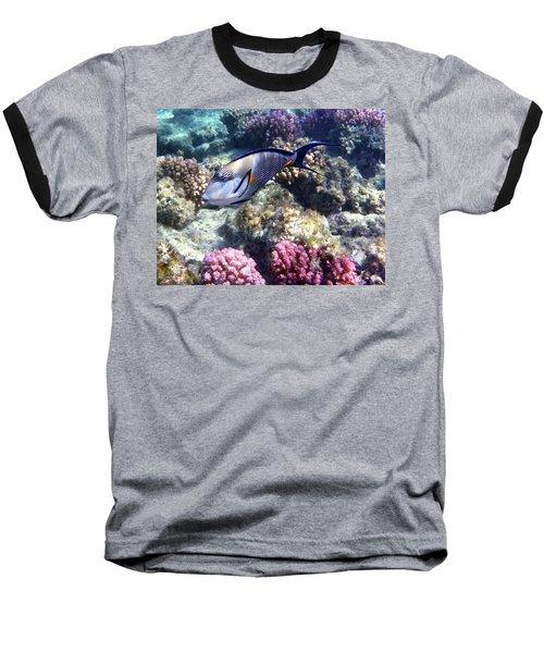 Sohal Surgeonfish 5 Baseball T-Shirt