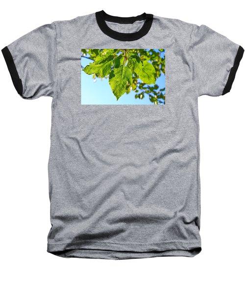 Solar Panels Baseball T-Shirt