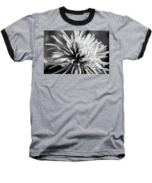 Solitute Baseball T-Shirt