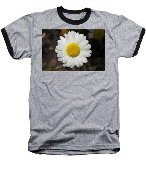 Solo Daisy Baseball T-Shirt