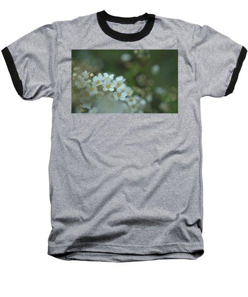 Some Gentle Feelings Baseball T-Shirt by Rachel Mirror