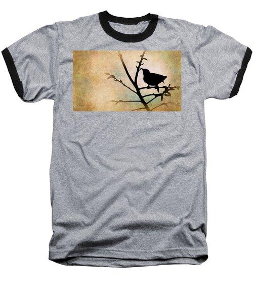 Song Bird Baseball T-Shirt