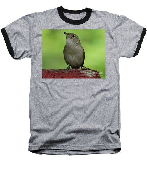 Song Bird Baseball T-Shirt