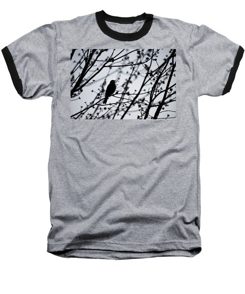 Baseball T-Shirt featuring the photograph Song Bird Silhouette by Terry DeLuco