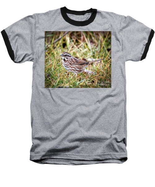 Baseball T-Shirt featuring the photograph Song Sparrow Sweetie by Kerri Farley