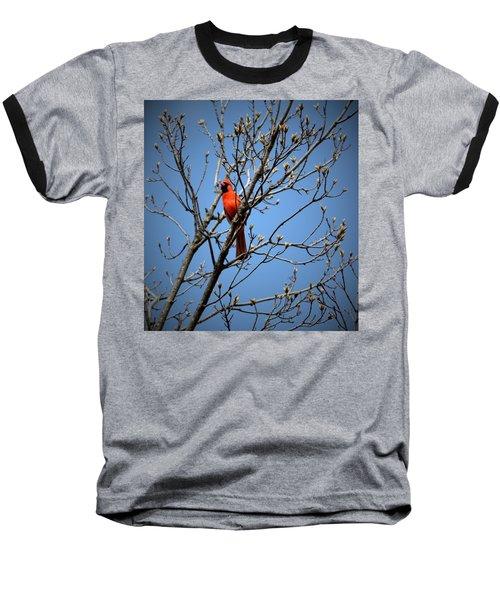 Songbird Baseball T-Shirt