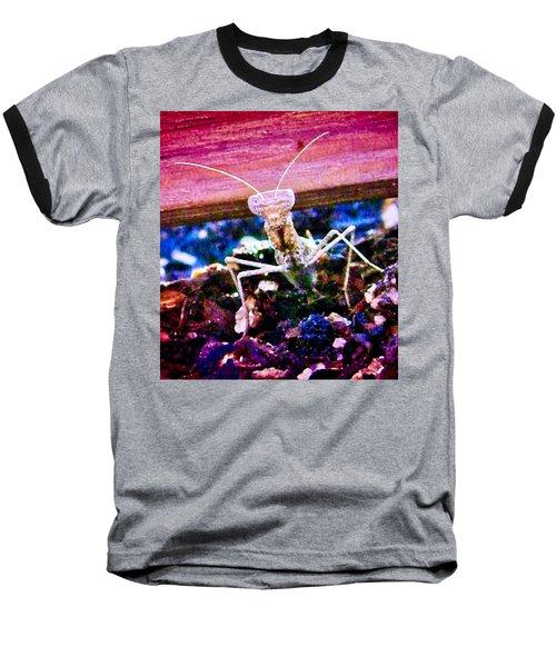 Sonoran Desert Ground Mantis Baseball T-Shirt