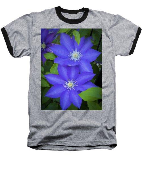 South Carolina Color Baseball T-Shirt