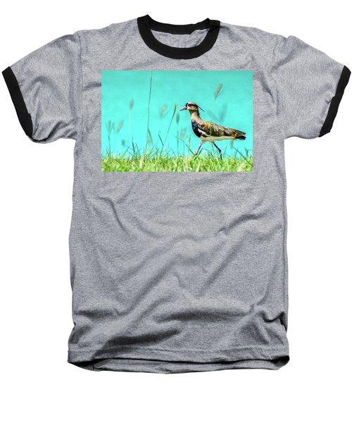 Southern Lapwing Baseball T-Shirt