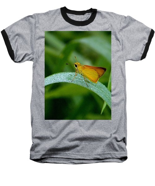 Southern Skipperling Butterfly  000 Baseball T-Shirt by Chris Mercer