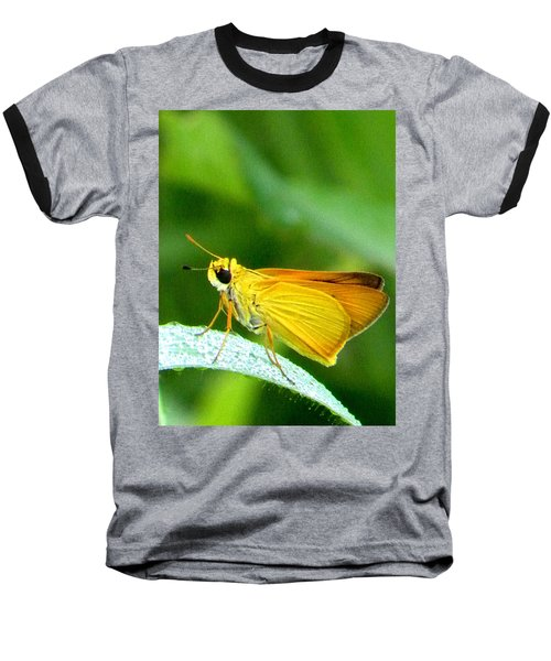 Southern Skipperling Butterfly 001  Baseball T-Shirt by Chris Mercer