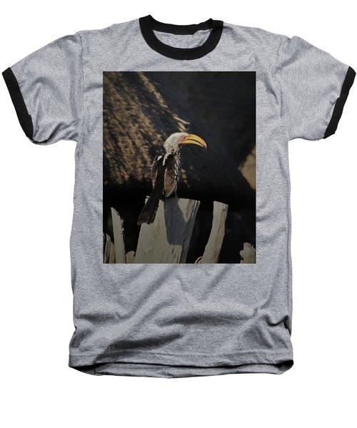 Southern Yellow Billed Hornbill Baseball T-Shirt by Ernie Echols