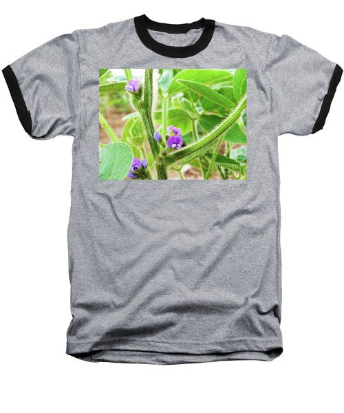 Soybean  Baseball T-Shirt