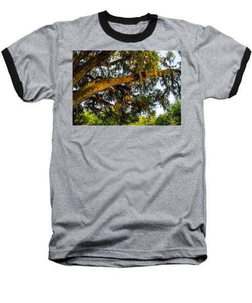 Baseball T-Shirt featuring the photograph Spanish Moss In The Gloaming by Deborah Smolinske